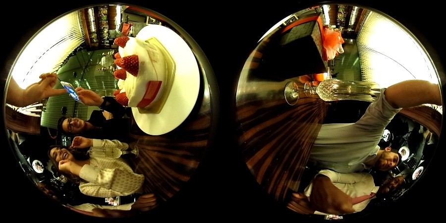 Fish Eye views stitched together