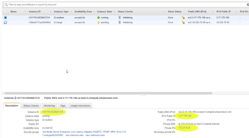 Information of Ant Media Server Instance